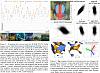 Click image for larger version.  Name:pjlGvNx.png Views:51 Size:810.6 KB ID:7747